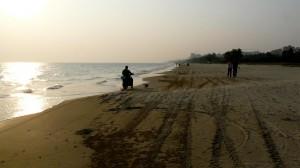 Sanya Strand mit Hund